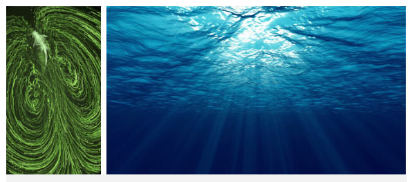 Nước từ đáy biển sẽ bị đẩy lên trên bề mặt