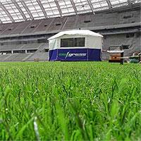 """Đây là lí do chung kết World Cup 2018 sẽ sử dụng sân cỏ """"lai"""""""