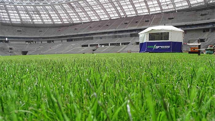Sân vận động Luzhniki (trái) và cận cảnh cỏ nhân tạo (phải).
