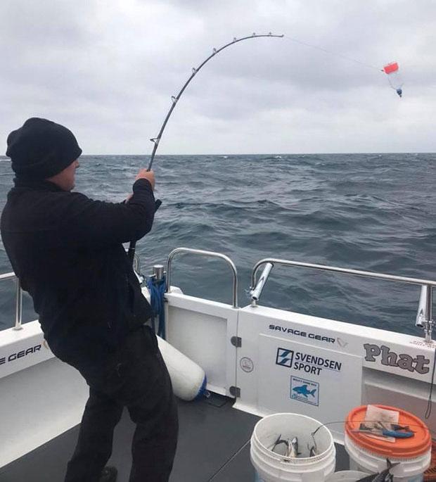 Sau khi chụp ảnh với sinh vật, Deans đã thả con cá về biển.
