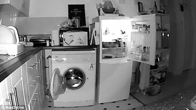 Cửa máy giặt và tủ lạnh dù đã được đóng chặt vẫn tự mở ra vào mỗi đêm.