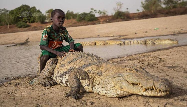 Người dân làng Bazoule có mối quan hệ thân thiết với cá sấu.