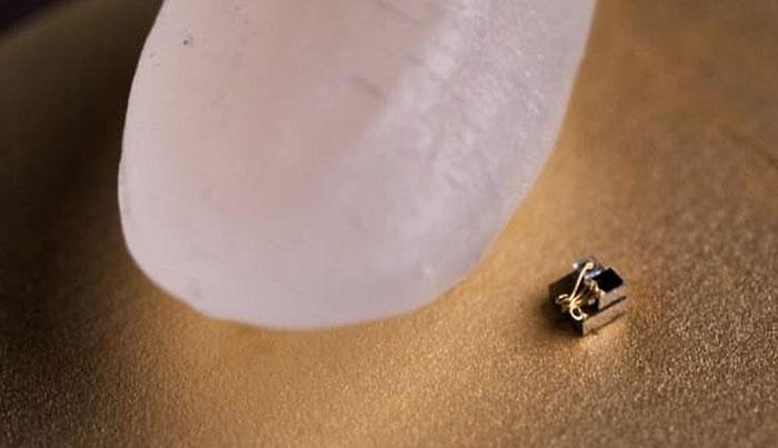 """Chiếc máy tính siêu nhỏ của Đại học Michigan bị """"áp đảo"""" khi đặt cạnh một hạt gạo"""