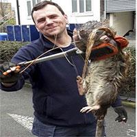 Chuột khổng lồ to như mèo tấn công thị trấn Thụy Điển