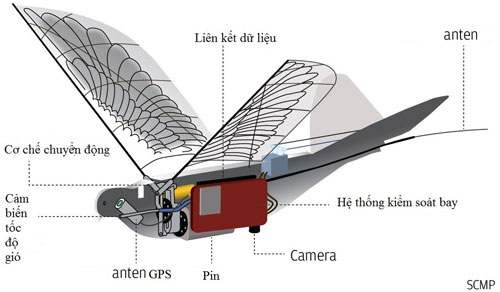 """Thiết kế của máy bay không người lái thuộc chương trình """"Bồ câu""""."""