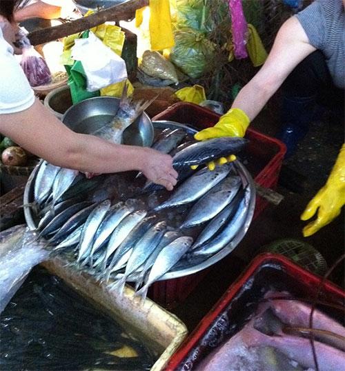 Khách hàng chọn mua cá biển tại chợ An Phú, Q.12, TPHCM.