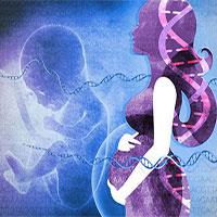 Bé gái sinh ra với gần 100% gene từ người bố và đó không phải là điều may mắn đâu!