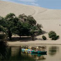 """""""Phép lạ"""" ở thị trấn nằm giữa sa mạc khô cằn nhất thế giới"""