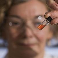Phát hiện sắc tố sinh học hơn 1,1 tỷ năm tuổi