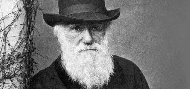 Charles Darwin đã rất hứng thú với việc nhiệt sẽ cung cấp một lực cho phép nhện tung tơ trong gió.