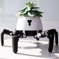 """Robot """"đầu chỉ để trồng cây"""" biết tìm tới ánh sáng để quang hợp, báo hiệu khi cây khát nước"""