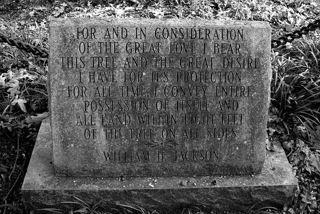 Tấm bia đá ghi một phần nội dung của tờ giấy quyền sở hữu đất.
