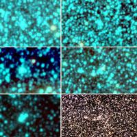 Kỳ thú cụm sao hình cầu mới trong thiên hà Milky Way