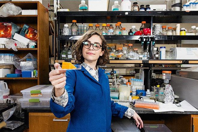 Sinh học tổng hợp có thể trở thành phương pháp sản xuất bền vững và đạo đức hơn.