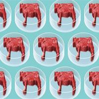 Liệu sinh học tổng hợp có thay đổi được tương lai của thực phẩm?