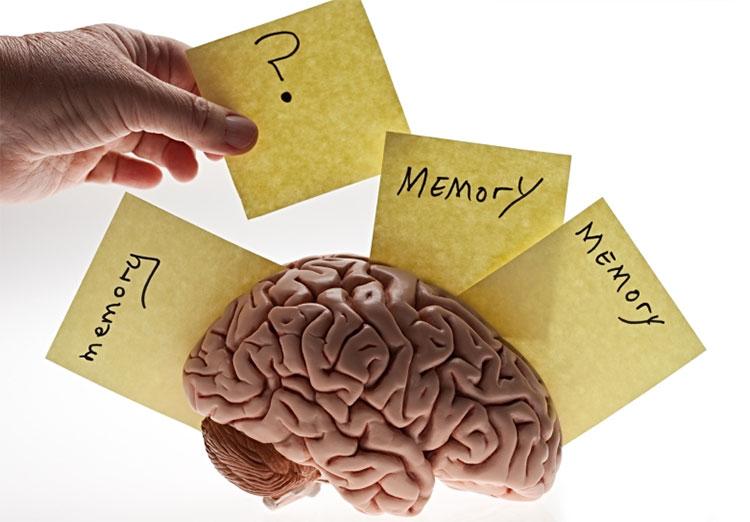 Kí ức phức tạp hơn nhiều so với cách mọi người hiểu về chúng.