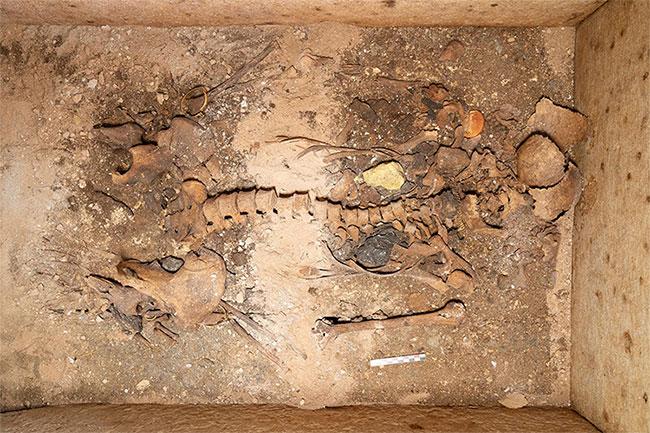 Lăng mộ gần như nguyên vẹn của một người phụ nữ quý tộc cổ đại.