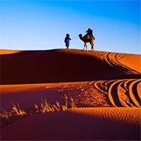 Những sự thật ít người biết về sa mạc Sahara
