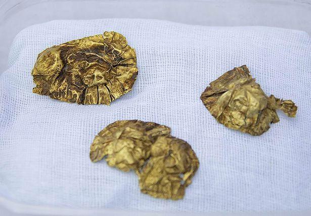 Một trong những hiện vật bằng phát được phát hiện trong ngôi mộ cổ.