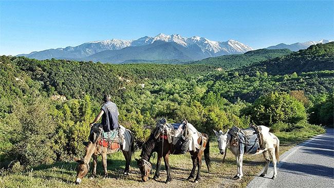 Đỉnh cao nhất trên núi này là Mitikas và cũng là đỉnh cao nhất tại Hy Lạp.