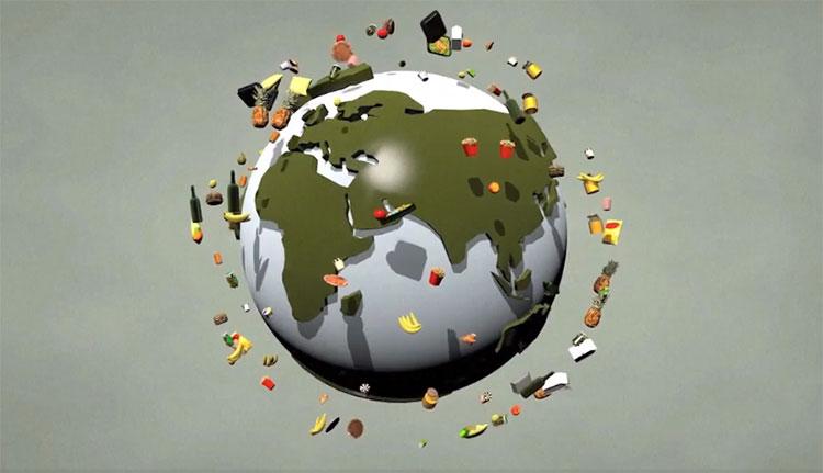 Trái cây, rau củ, cá, ngũ cốc, trứng và sữa là những thực phẩm bị vứt bỏ nhiều.