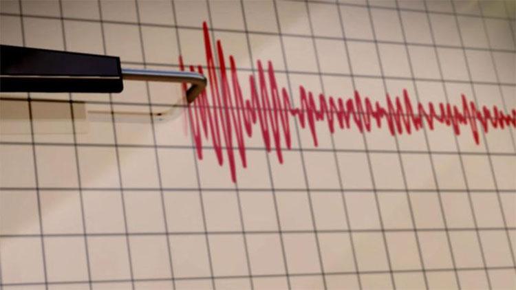 Cơn động đất lớn còn gây ra một chuỗi địa chấn các địa lục khác ngoài nơi bị ảnh hưởng.