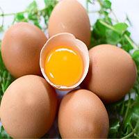 Ăn trứng thế nào là đúng cách?