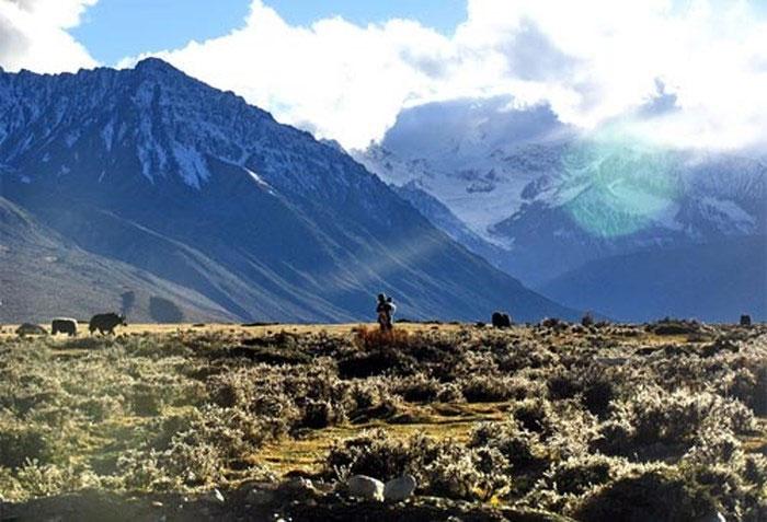 Cao nguyên Tây Tạng