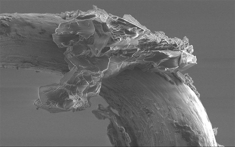 Hình ảnh quan sát qua kính hiển vi hạt bụi lấy từ tiểu hành tinh Itokawa.