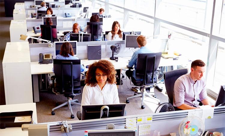 Không khí bí bách khi văn phòng có diện tích khiêm tốn nhưng số lượng nhân viên lại khá đông đúc.