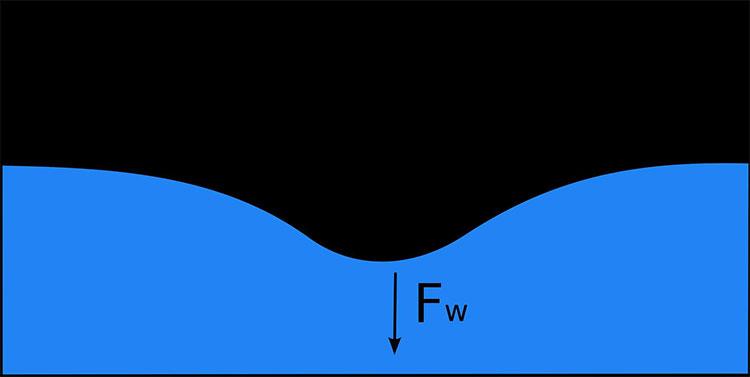 Sức căng bề mặt (surface tension – Fs) xuất hiện khi có một lực căng vuông góc (Fw) với mặt phẳng chất lỏng như trên hình.