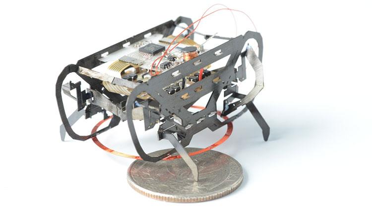HAMR là một một chú robot nặng 1,5 gam có thể di chuyển trên mọi địa hình.