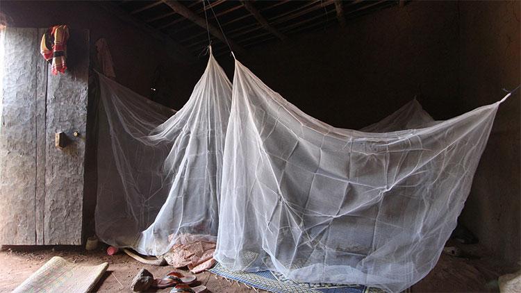 Loại màn mới được bổ sung hóa chất diệt côn trùng.