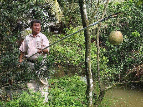 Ông Lê Phước Lộc trình diễn cách sử dụng kéo cắt tỉa đa năng.