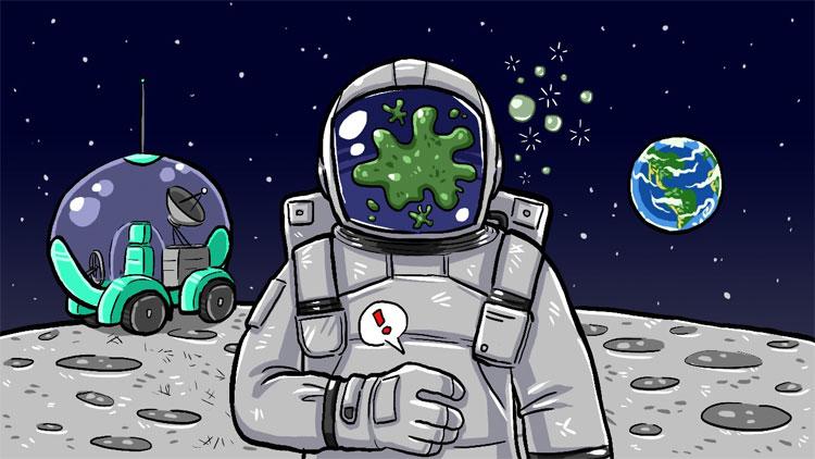 67 đến 75% phi hành gia mắc phải Hội chứng đáp ứng không gian.