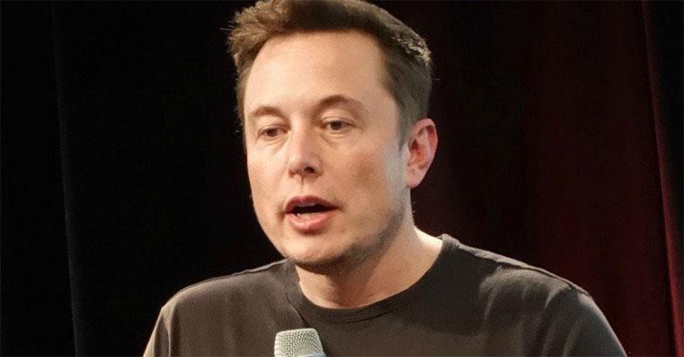 Musk cho biết kể từ khi bị sốt rét vào năm 2001, ông chưa từng ngơi làm việc.
