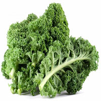 Hợp chất indole-3-carbinol trong rau cải có thể ngừa ung thư ruột