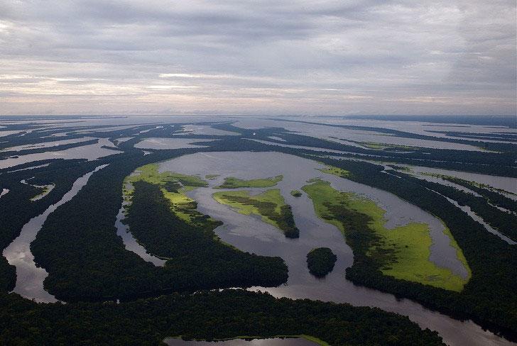 Rừng Amazon còn một con sông nữa còn lớn hơn cả sông Amazon