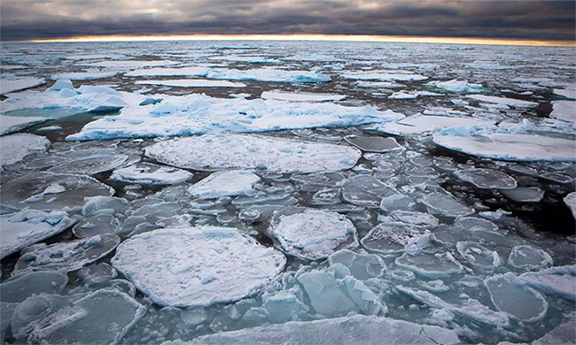 Bắc Cực đang nóng lên với tốc độ gấp đôi tốc độ trung bình của sự nóng lên toàn cầu