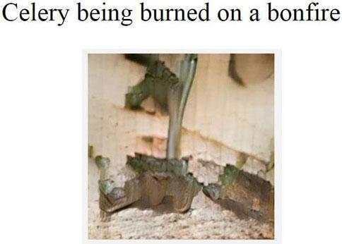 Nhánh cần tây đang bị đốt trên đống lửa.