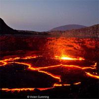 """Sự sống đáng kinh ngạc ở """"cổng địa ngục"""" khắc nghiệt nhất thế giới"""