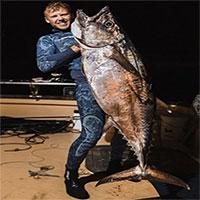 Cá ngừ răng chó hai mét bị ngư dân New Zealand bắt gọn