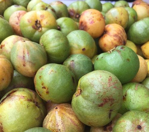Quả bứa có mùi hương dễ chịu, có vị chua, vỏ màu xanh khi chín vỏ màu vàng.