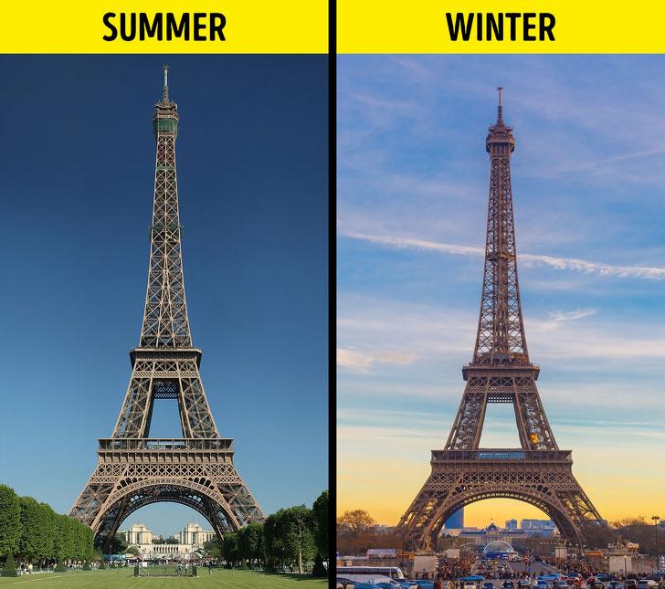 Vào mùa hè, tháp Eiffel cao thêm 15cm.