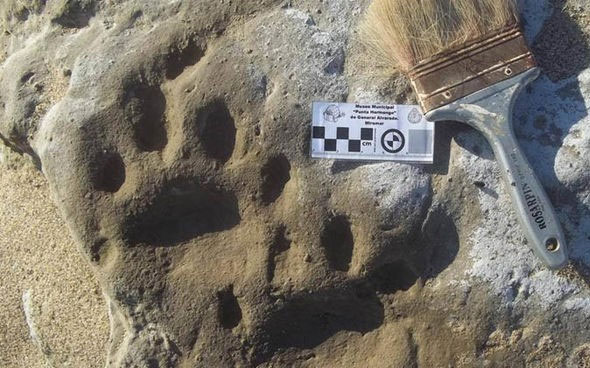 Những dấu chân được phát hiện ở khu nghỉ mát bờ biển của Miramar