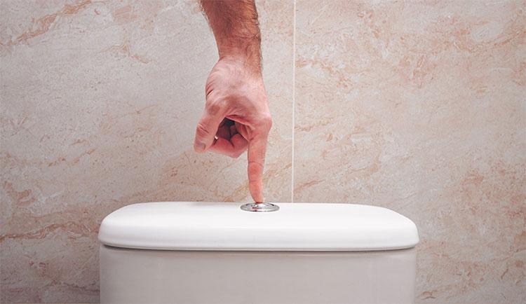 Bạn nên đóng nắp bồn cầu lại trước khi giật nước.