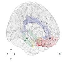 Mỹ phát triển thuật toán để theo dõi tâm trạng qua hoạt tính của não bộ