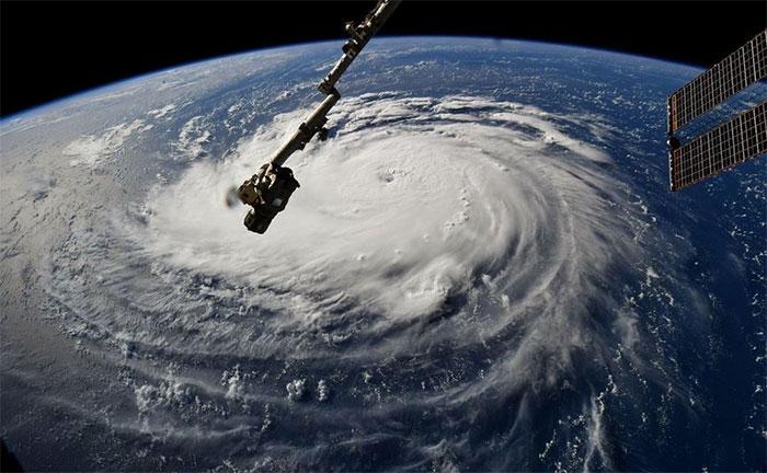 Được biết, Arnold đã theo dõi bão Florence suốt nhiều ngày.