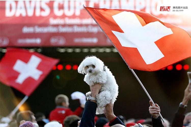 Những người yêu động vật tại Thụy Sĩ phản đối tiêu thụ thịt chó mèo.