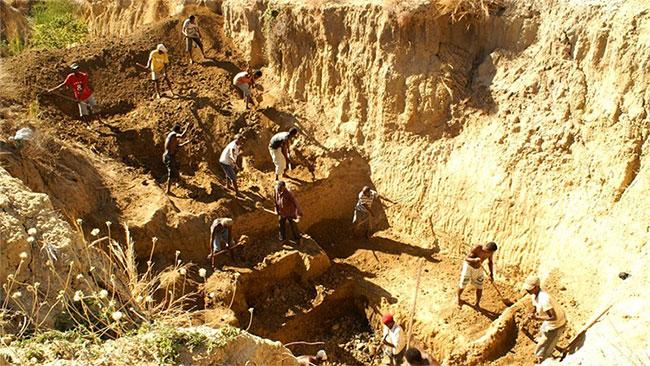 Các nhà nghiên cứu khai quật xương chim voi ở di chỉ bên sông Christmas, Madagascar.